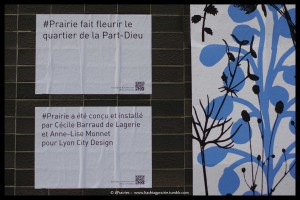instants littéraires #prairie explications